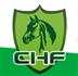 展会标题:2019第十三届中国国际马业马术展览会