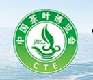 茶叶-2019中国茶叶博览会