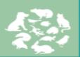 展会标题图片:2019华南宠物文化节(2019深圳宠物产业博览会暨华南宠物文化节)